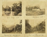 Picture relating to Ingham - titled 'Group of four photographs taken in the Herbert River area near Ingham, ca. 1881'