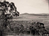 Picture relating to Red Hill - titled 'View from Red Hill towards Mount Ainslie over Forrest area'
