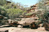 Picture relating to Cocoparra National Park - titled 'Cocoparra National Park'