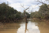 Picture relating to Paroo River - titled 'Paroo River'