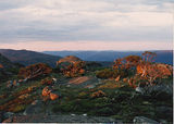 Picture of / about 'Mount Morgan' New South Wales - Summit of Mount Morgan on sunset