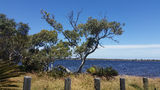 Picture of / about 'Lake Indoon' Western Australia - Lake Indoon