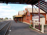 Picture relating to Nyngan - titled 'Nyngan'