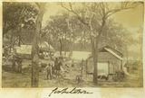 Picture relating to Cooktown - titled 'Surveyor's camp in Cooktown, north Queensland'