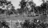Picture relating to Brisbane - titled 'Lightly timbered land at Wavell Heights, Brisbane, ca.1938'