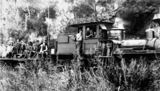 Picture relating to Canungra - titled 'Pine Creek Tramway, Canungra, ca. 1920'
