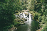 Picture relating to Lamington National Park - titled 'Lamington National Park'
