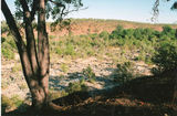 Picture relating to Palmer River - titled 'Palmer River'