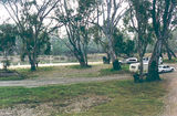 Picture relating to Tocumwal - titled 'Tocumwal Regional Park; Pebbly Beach'