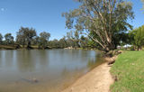Picture of / about 'Murray River' New South Wales and Victoria - Murray River at Albury