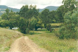 Picture relating to Murray River Road - titled 'Murray River Road: Clarkes Reserve'
