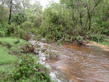 Picture relating to Takilberan Creek - titled 'Takilberan Creek'