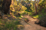Picture relating to Stockyard Gully Tunnel - titled 'Stockyard Gully National Park WA'