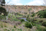 Picture relating to Werribee River - titled 'Werribee River Valley'