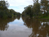 Picture of / about 'Lachlan River' New South Wales - Lachlan River at Cowra