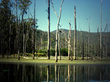 Picture of / about 'Lake Borumba' Queensland - Lake Borumba
