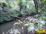 Picture relating to Tinana Creek - titled 'Tinana Creek'