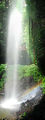 Picture of / about 'Dorrigo National Park' New South Wales - Crystal Shower Falls