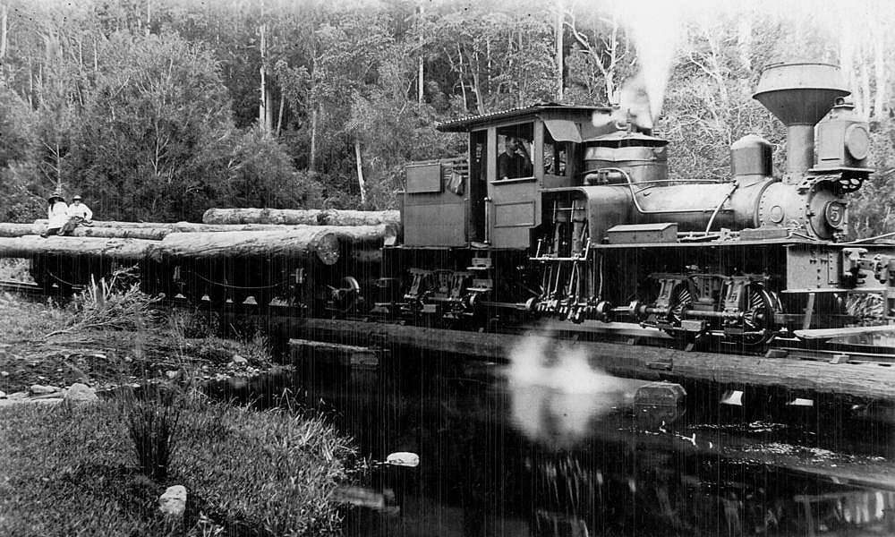 Picture of / about 'Canungra' Queensland - Shay Locomotive 5, part of the Canungra Pine Creek Tramway, ca. 1914
