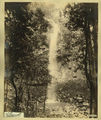 Picture relating to Killarney - titled 'Killarney Falls, Killarney, in the Warwick district, 1889'