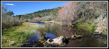 Picture of / about 'Bombala River' New South Wales - Bombala River