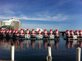 Picture relating to Darling Harbour - titled 'Christmas on the Harbour'