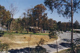 Picture relating to Hume Freeway - titled 'Hume Freeway: Grass Tree Fwy Park'