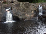 Picture of / about 'Wappa Falls' Queensland - Wappa Falls