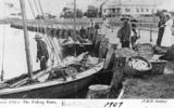 Picture relating to Wynnum - titled 'Fishing boats at Wynnum, 1907'