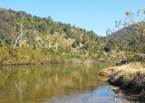 Picture relating to Mitchell River National Park - titled 'Mitchell River National Park'