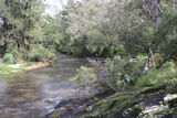 Picture of / about 'Mole River' New South Wales - Mole River near Gibraltar Station