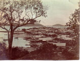 Picture relating to Thursday Island - titled 'Thursday Island settlement'
