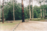 Picture relating to Bunyip State Park - titled 'Bunyip State Park: Mortimer Picnic Ground'