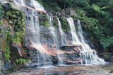 Picture of / about 'Wentworth Falls' New South Wales - Wentworth Falls