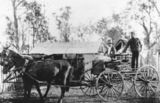 Picture relating to Taroom - titled 'Horsedrawn cart at Taroom Settlement, 1911'