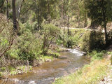 Picture relating to Gibbo River - titled 'Gibbo River'