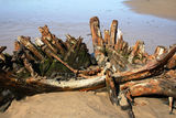 "Picture relating to Buster - titled 'Shipwreck ""Buster ""on Woolgoolga Beach'"