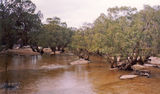 Picture of / about 'Archer River' Queensland - Archer River