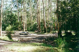 Tyers Junction bush camp/rest area