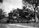 Picture relating to Dunk Island - titled 'Chalets at Dunk Island'