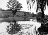 Picture relating to Molonglo River - titled 'View of Canberra Golf Links, Molonglo River in front.'