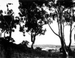 Picture relating to Mount Ainslie - titled 'Old Parliament House from Mount Ainslie'
