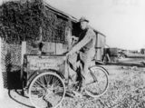 Picture relating to Boulia - titled 'Bert Saward delivering bread on his three-wheeler bicycle, Boulia, ca. 1930'