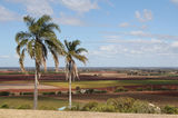 Picture of / about 'Bundaberg' Queensland - Bundaberg