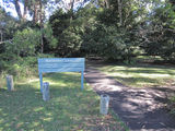 Picture of / about 'North Brother' New South Wales - North Brother Rainforest Loop Walk