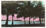 Picture relating to Palm Island - titled 'Palm Island'