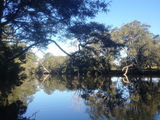 Picture of / about 'Wyong River' New South Wales - Wyong River