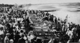 Picture relating to Sandgate - titled 'Sandgate Beach sand gardens competition, 1925'
