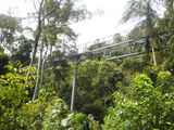 Picture of / about 'North Tamborine' Queensland - North Tamborine