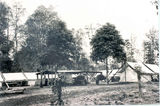 Picture relating to Yarraman State Forest - titled 'Yarraman State Forest Stables Camp'